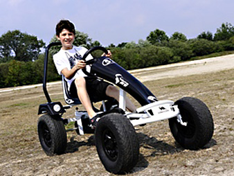 DINO Edition Pan Americana RS ZF Go Kart
